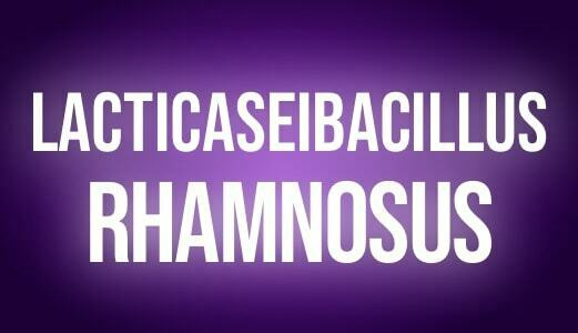 Lacticaseibacillus