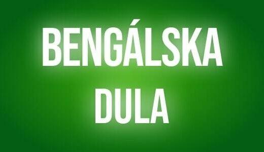 Bengalska dula